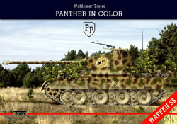 Panther in Color (Waffen-SS)